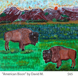 amerian bison by David M